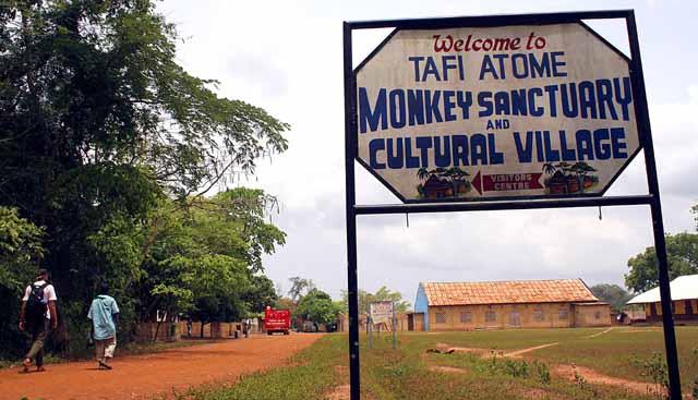 Tafe Atome monkey sanctuary