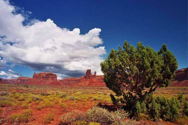 Valley of the Gods 3